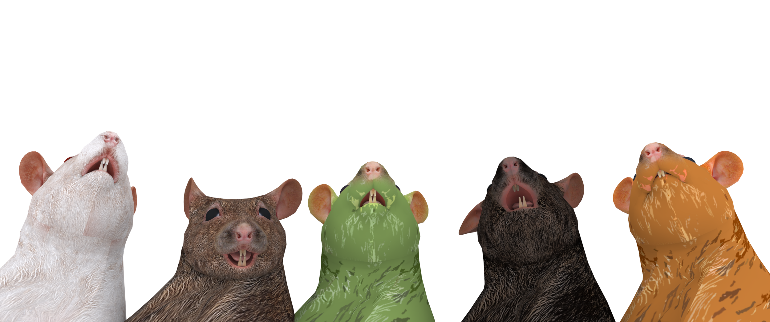 Rats.png