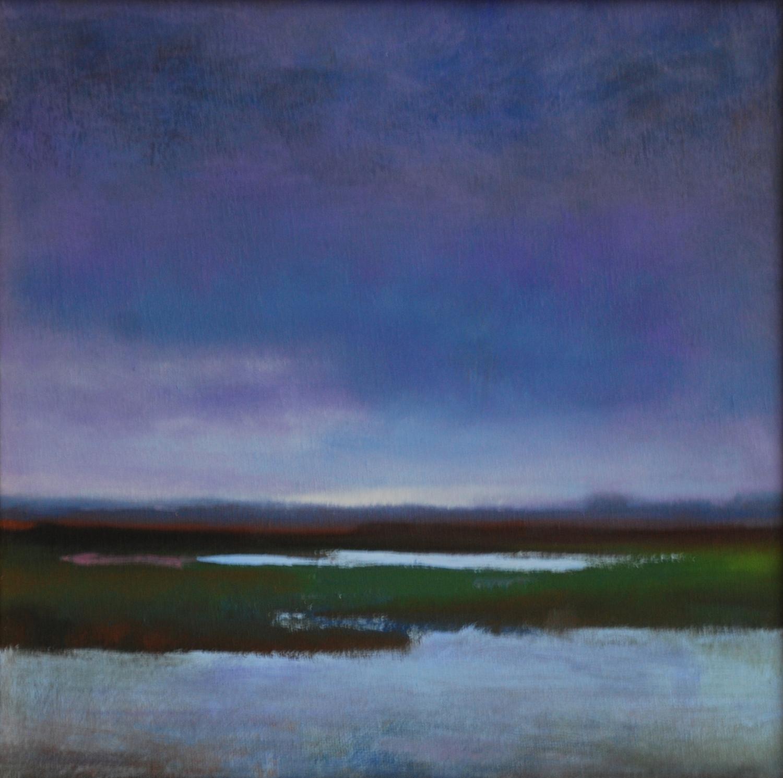 Midnight Marsh