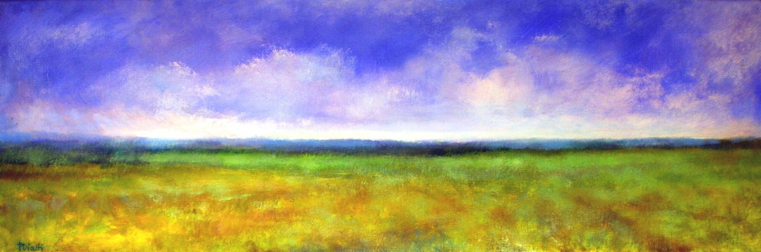 Field and Sky