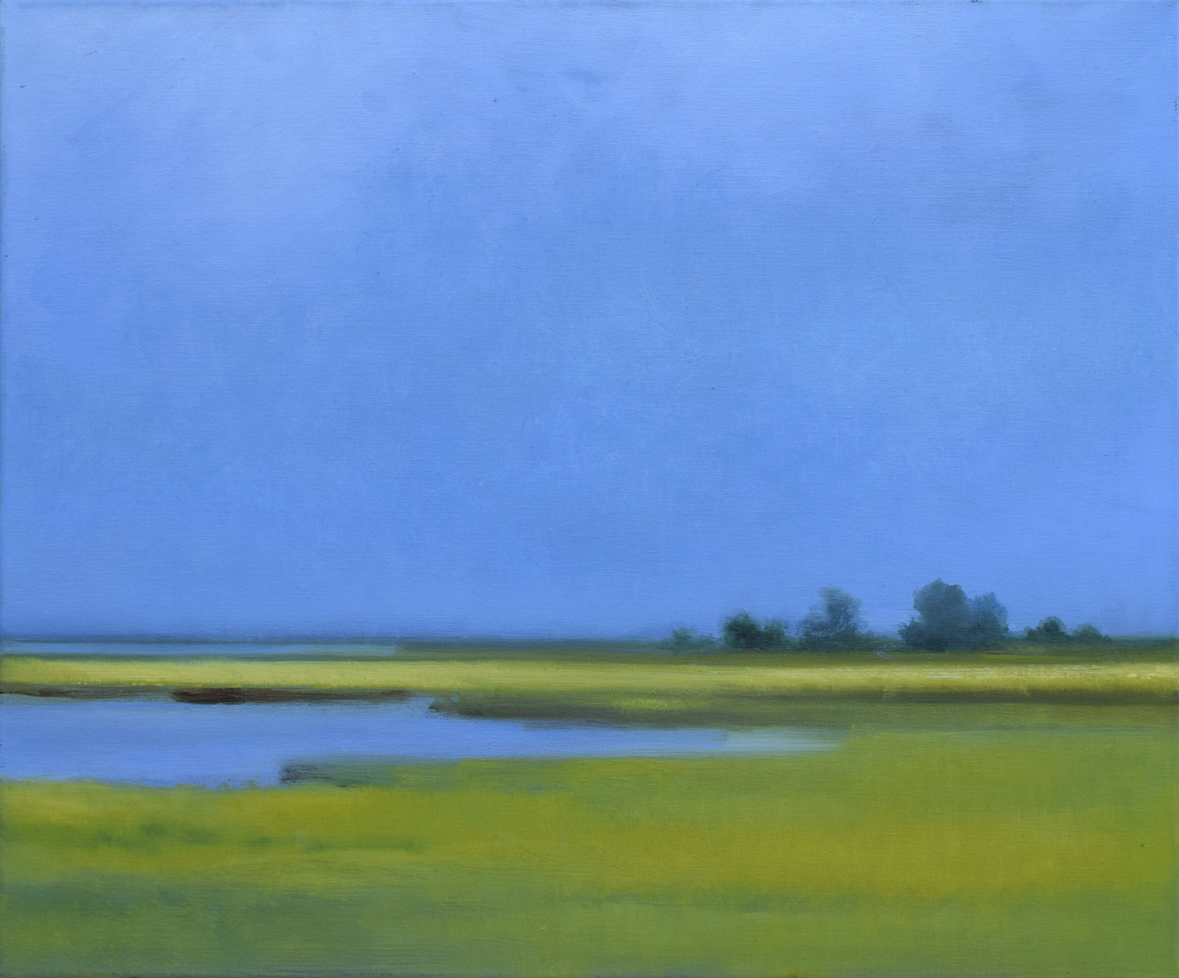 Marshes, untitled