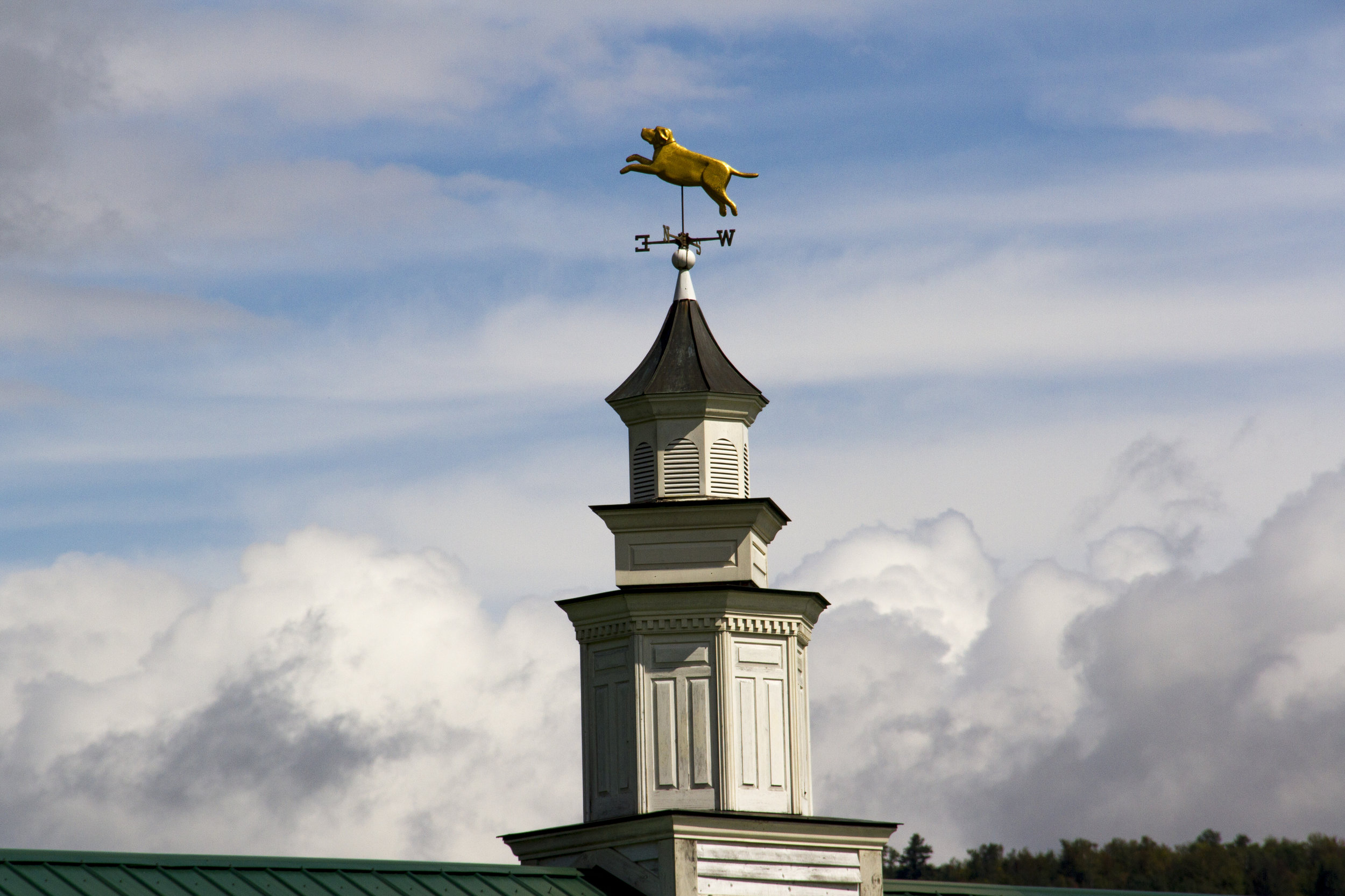 A weather vane on top of the cupola depicts a golden jumping dog, backdropped by blue sky and fluffy clouds.