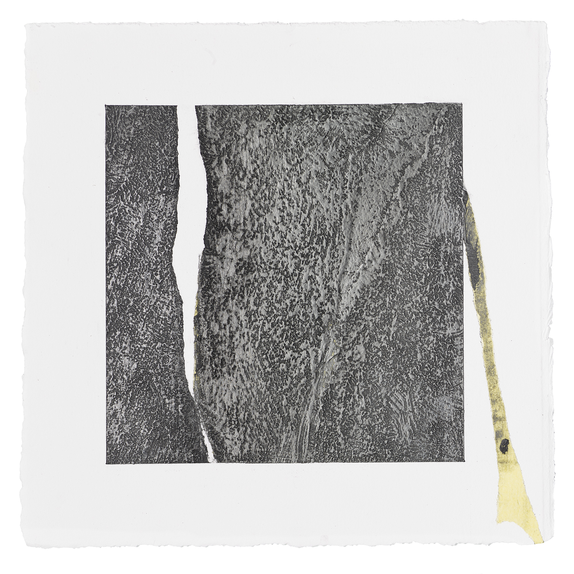 "ML61, peach pit soot, rabbit skin glue, graphite, 10.5""x10.5"" paper, 2016"