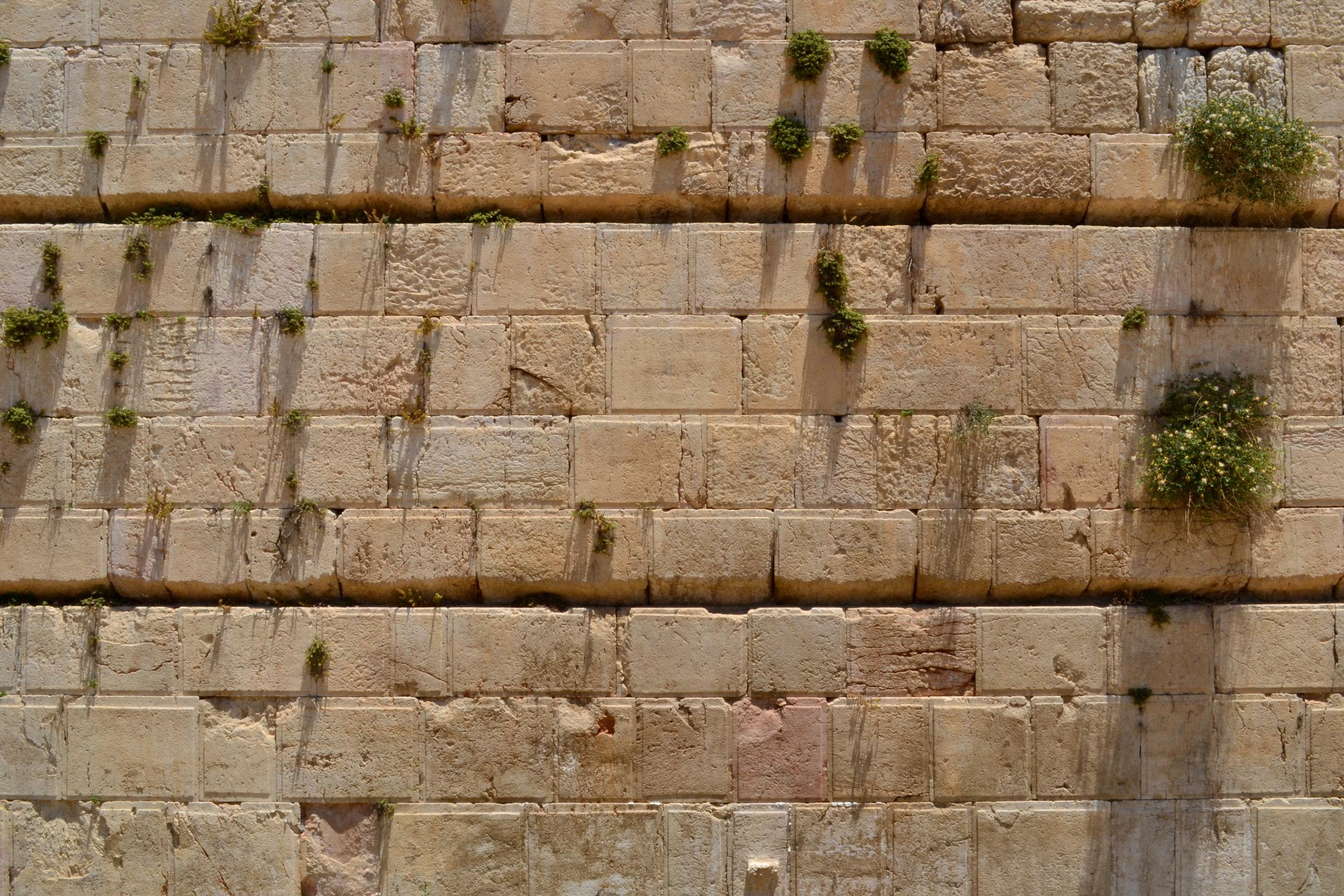 Israel_329.JPG