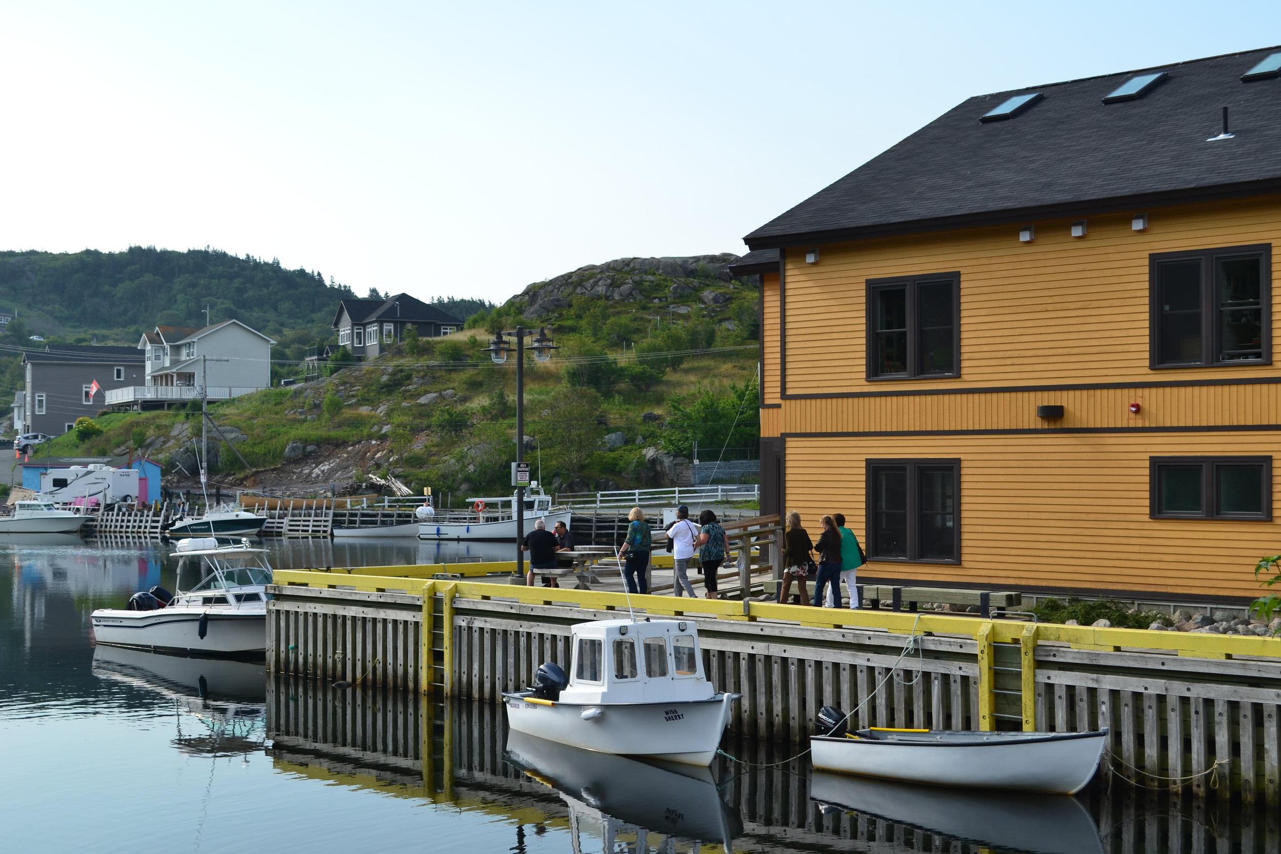 Newfoundland_009.JPG