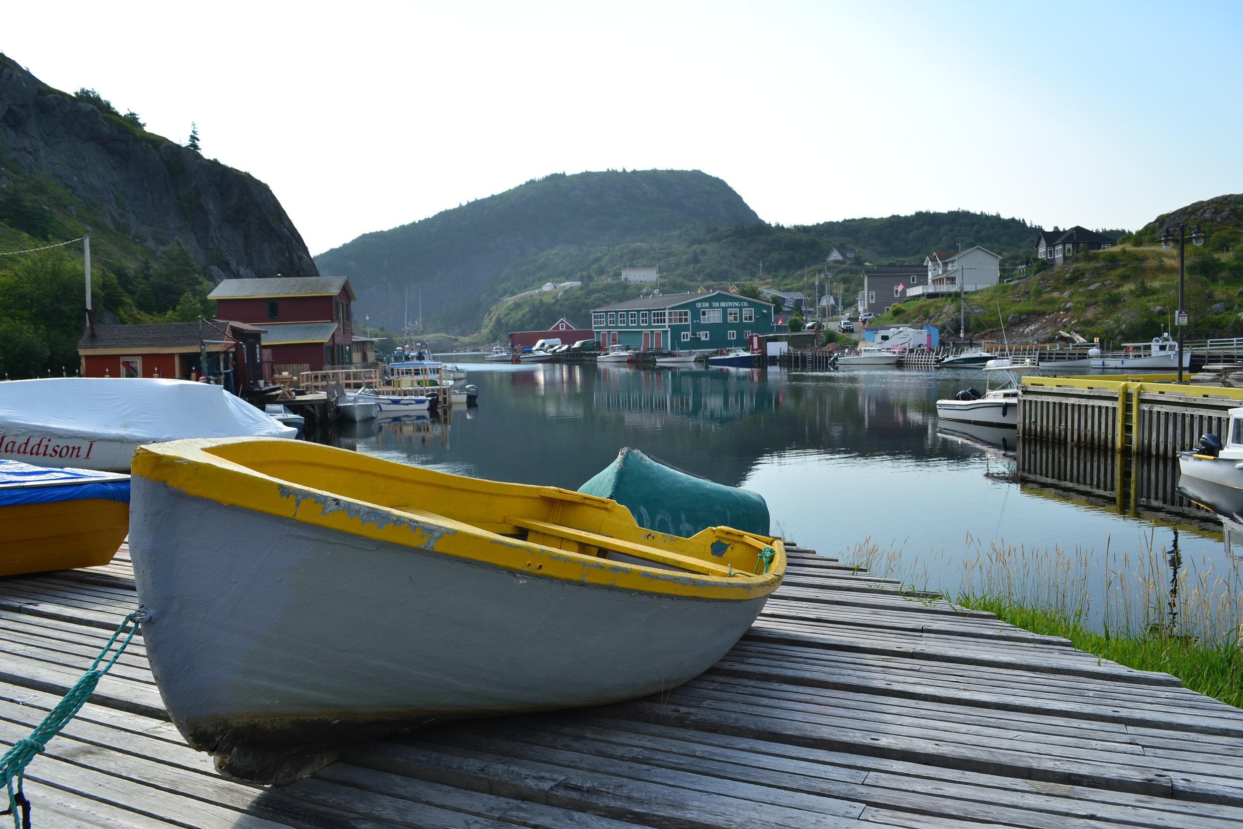 Newfoundland_006.JPG