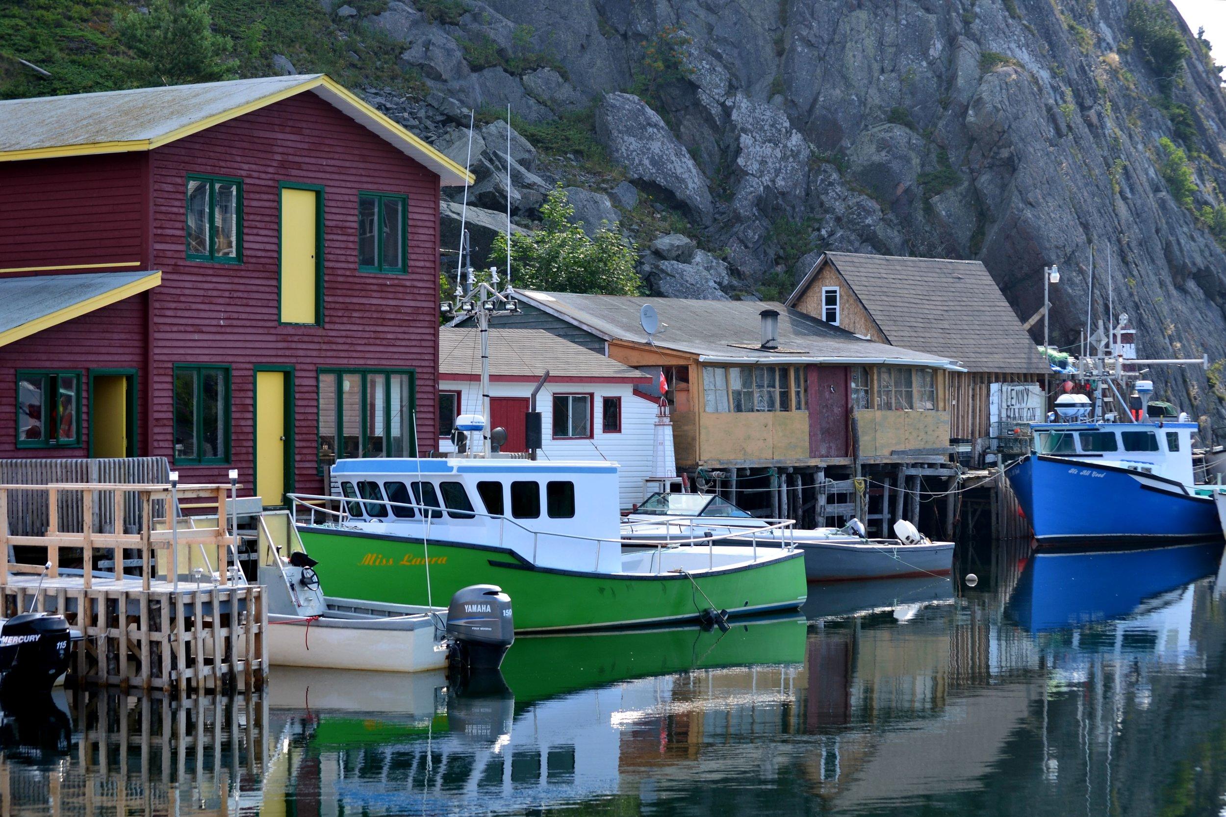 Newfoundland_042.JPG