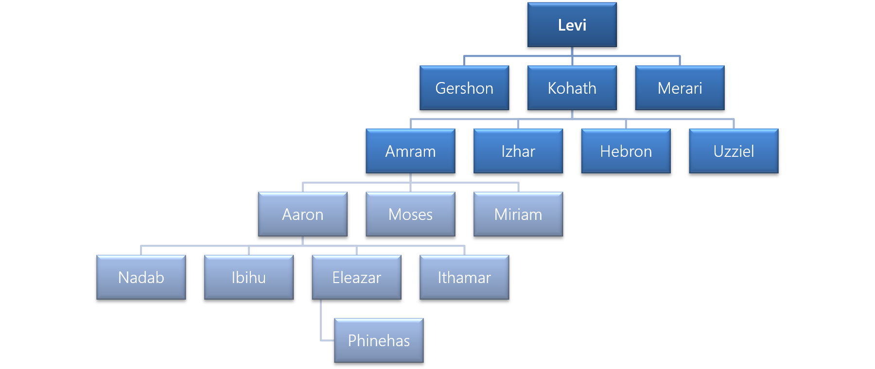 Figure 2 - The Family of Levi