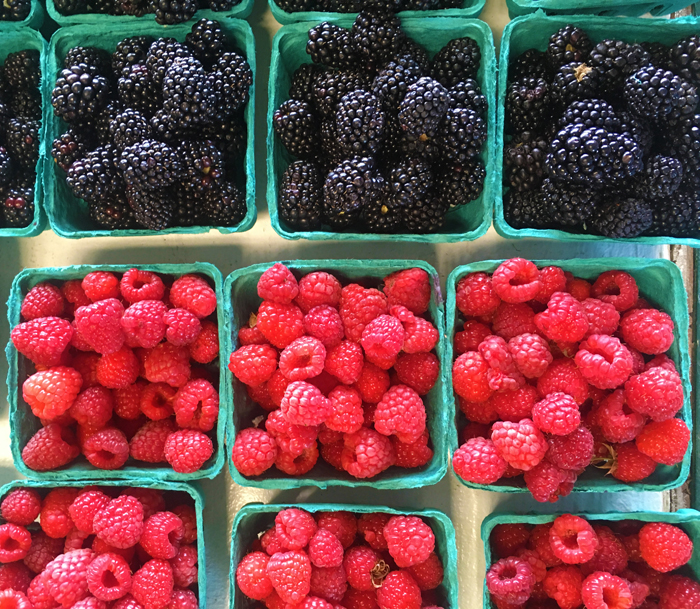 Berry-3.jpg