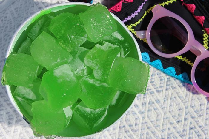 aloe-vera-ice-cubes-copy1.jpg