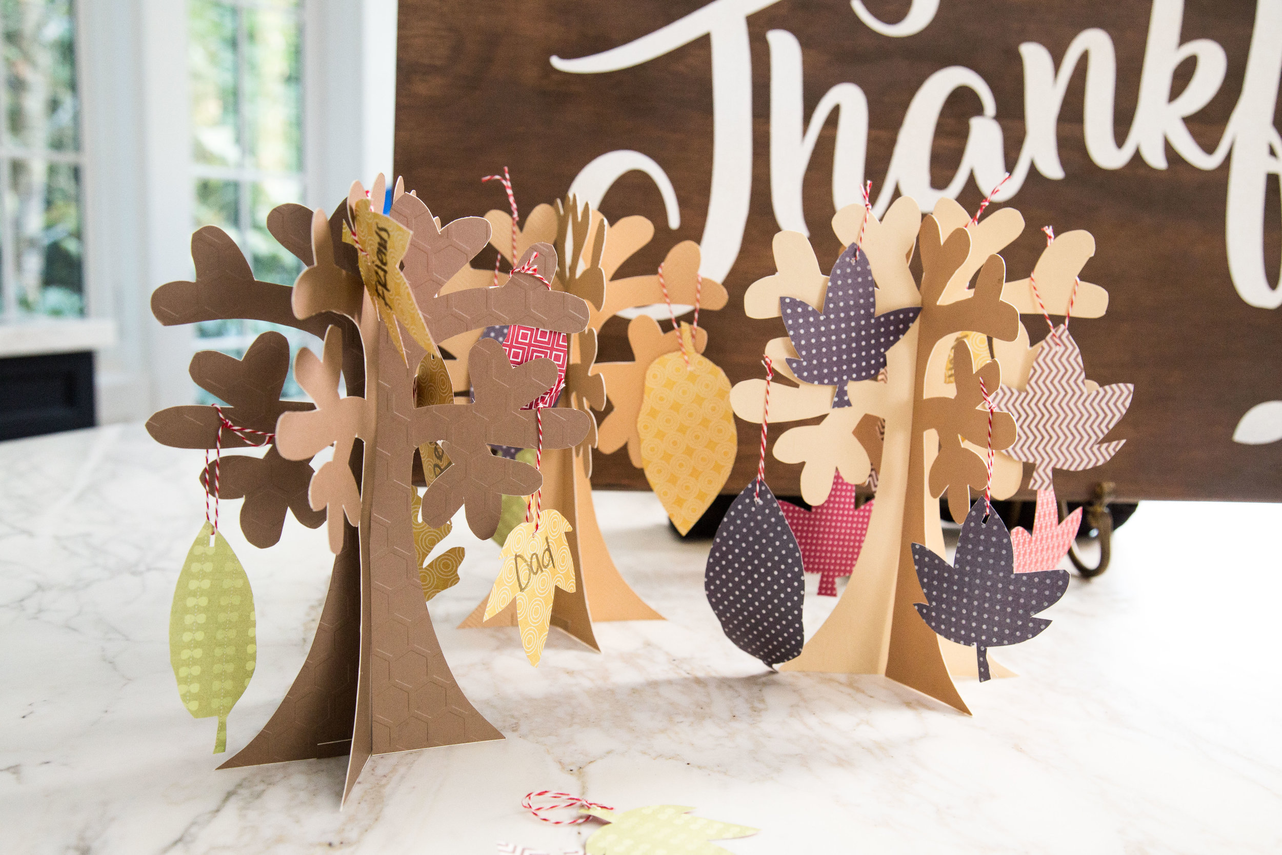 Molly Sims Easy Thanksgiving DIY Craft : Thankful Turkey - photography by Erica Hampton