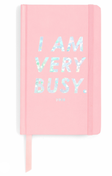 I AM VERY BUSY 17-MONTH HARDCOVER AGENDA