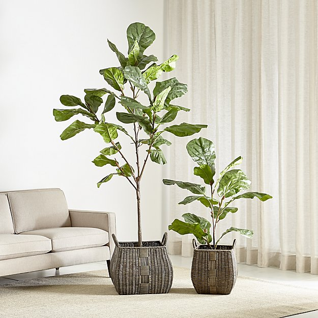 FAUX FIDDLE LEAF FIG TREES