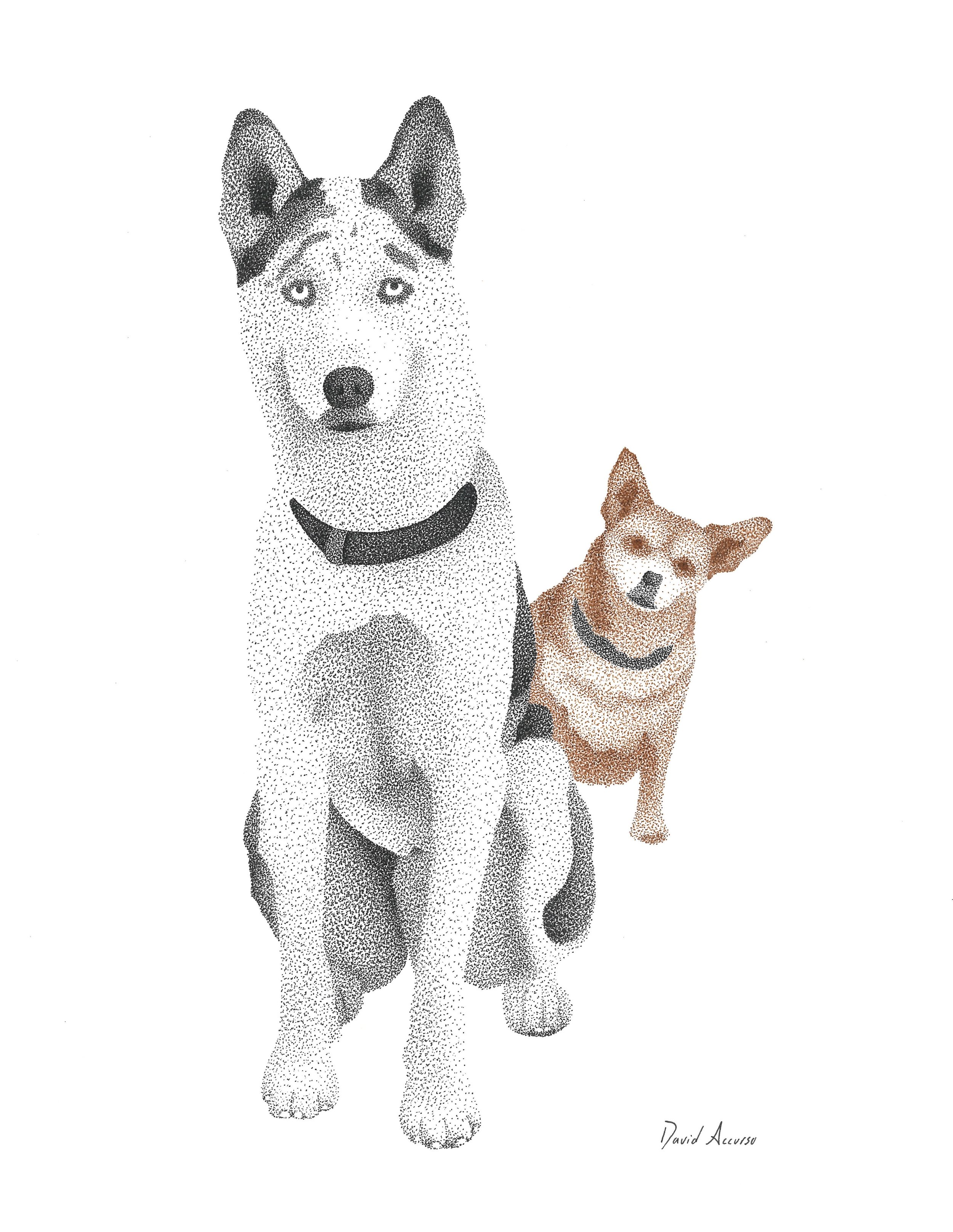 Morgenstern Dogs.jpg