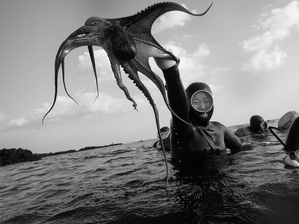 SOUTH KOREA. Jeju Island. 2014. No sooner had the group of Haenyeo I was diving with entered the water when one of them snatched an octopus from its hiding place under a rock. commissioned by the Korean Arts Council