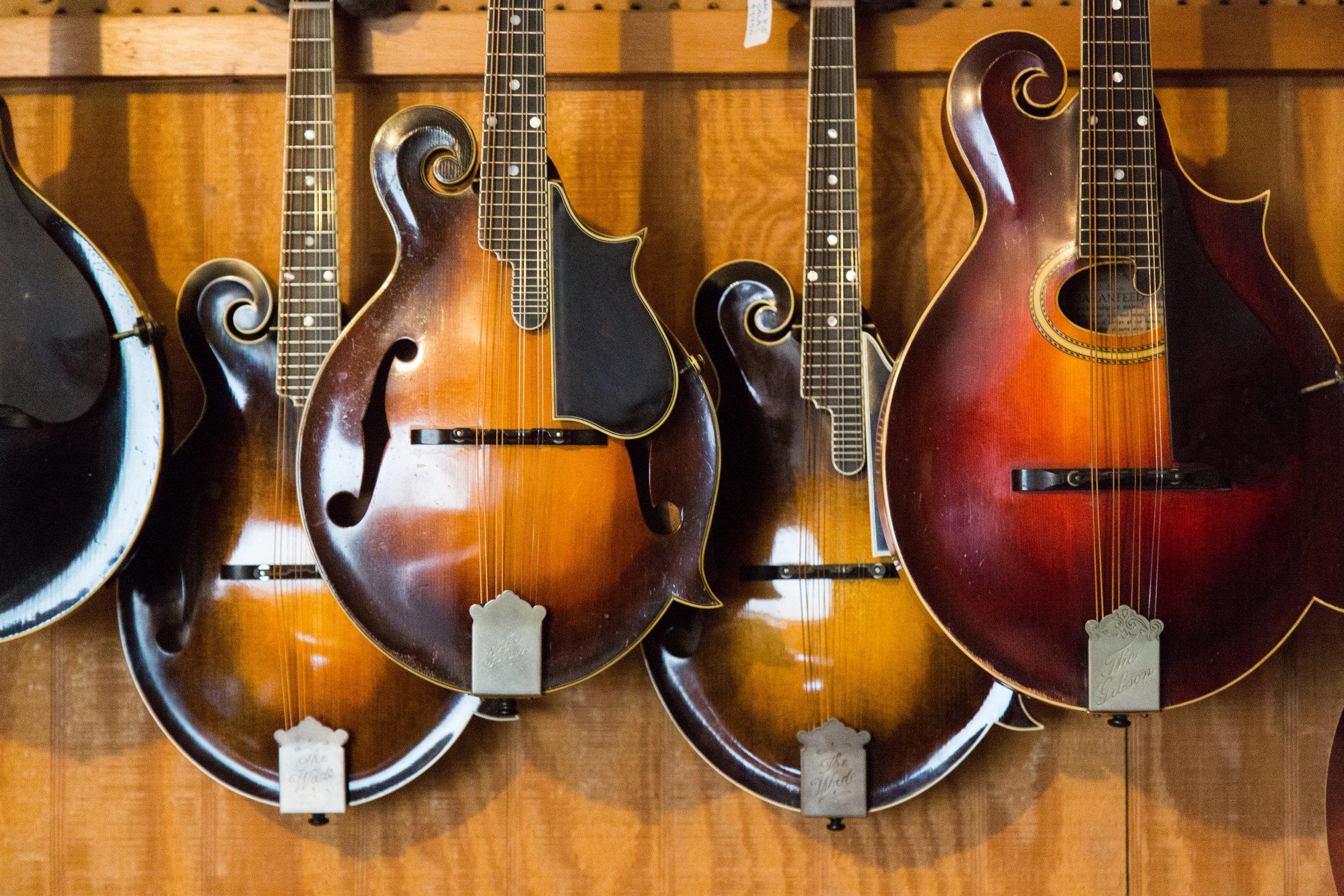 A small sampling of mandolins Tony carefully stores and maintains at Mandolin Central.