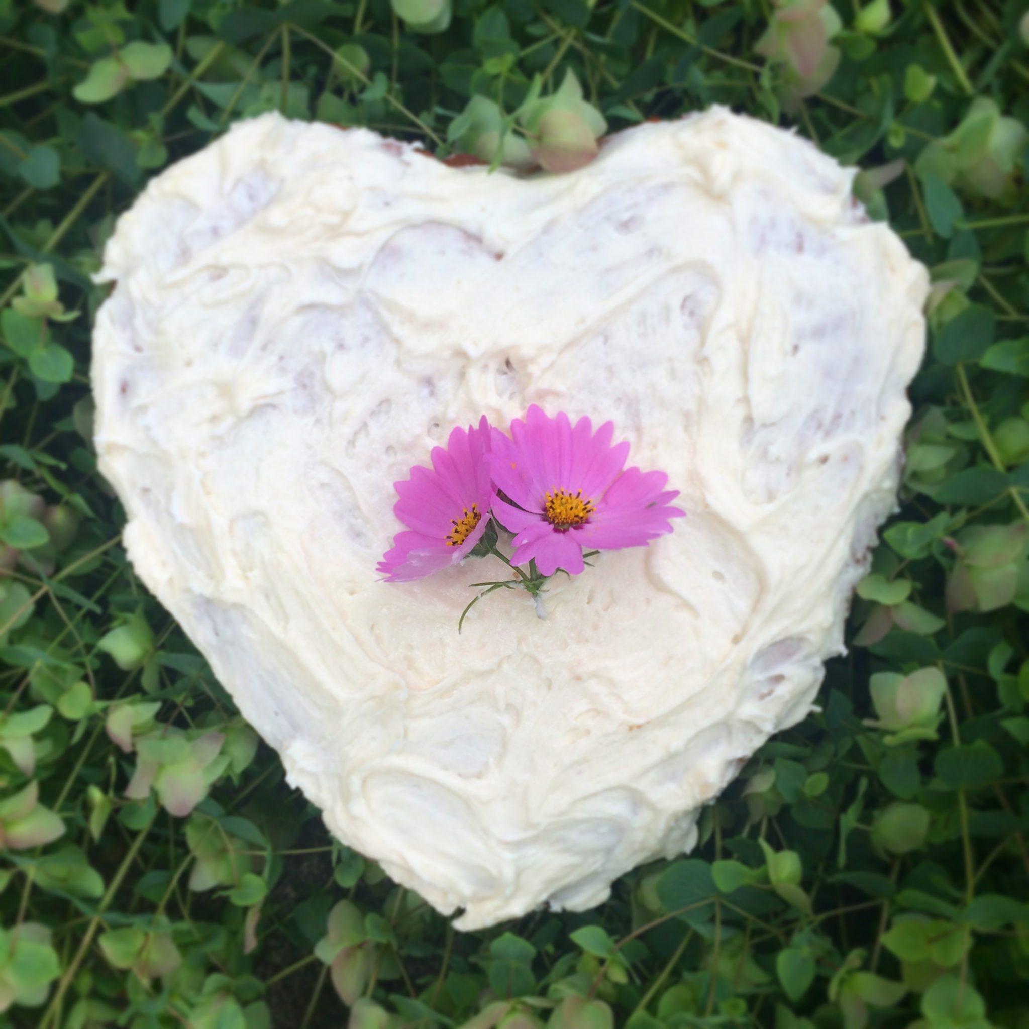 plum nelli homemade heart cake