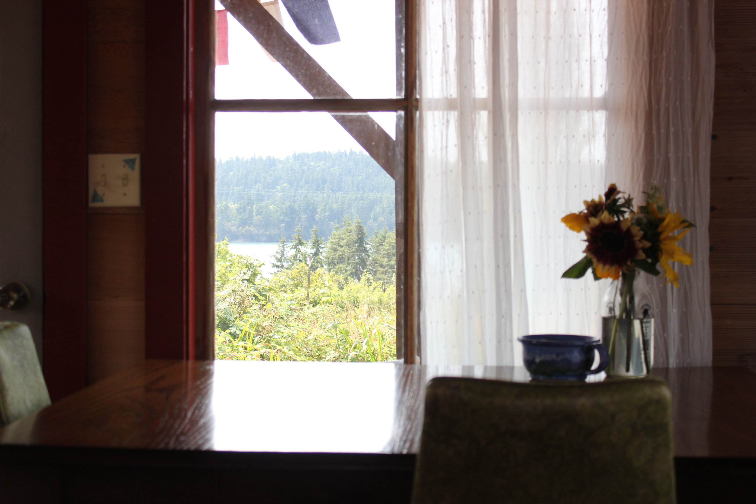 room with a view at plum nelli cabin.JPG