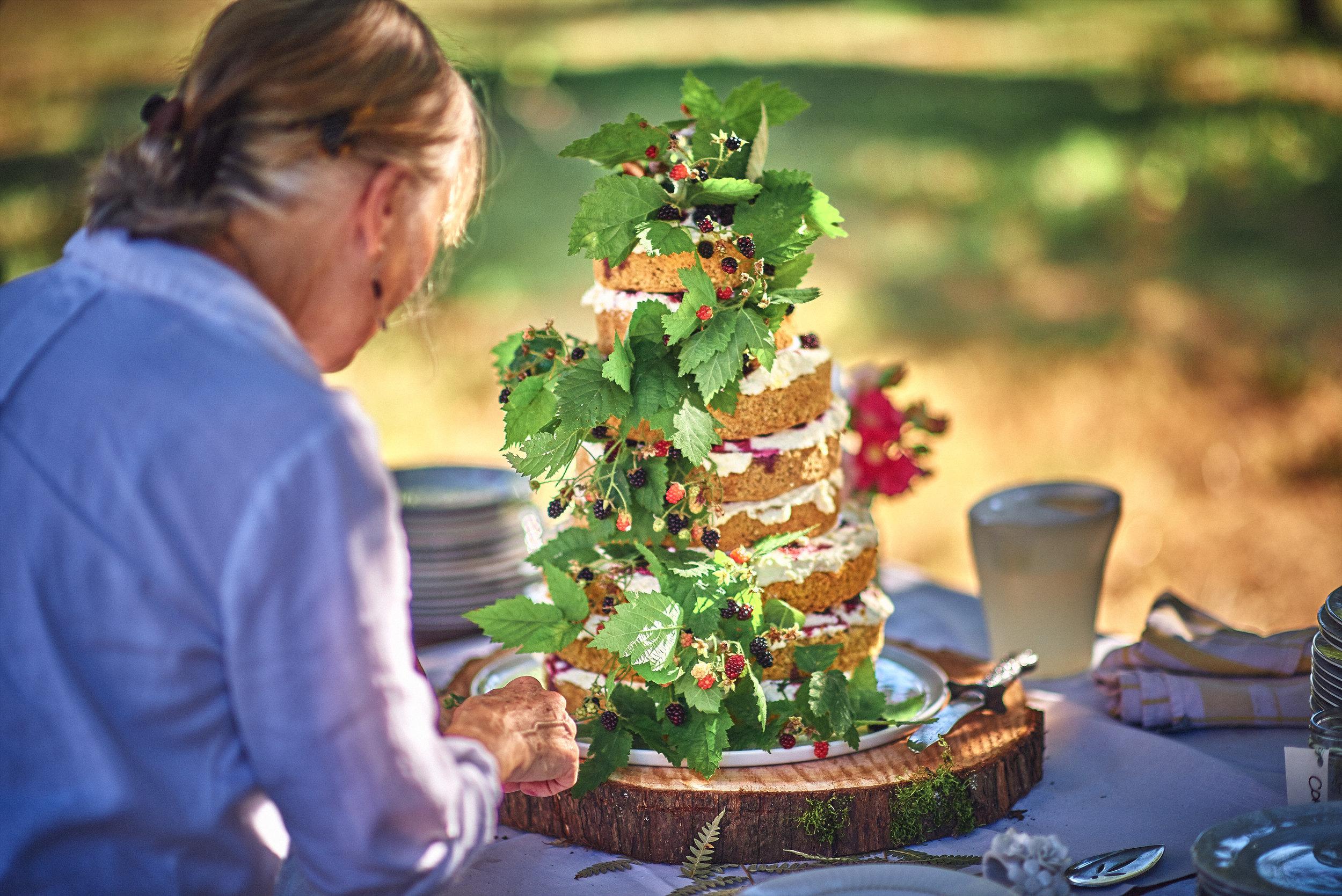 naked blackberry cake at plum nelli farm wedding.jpg