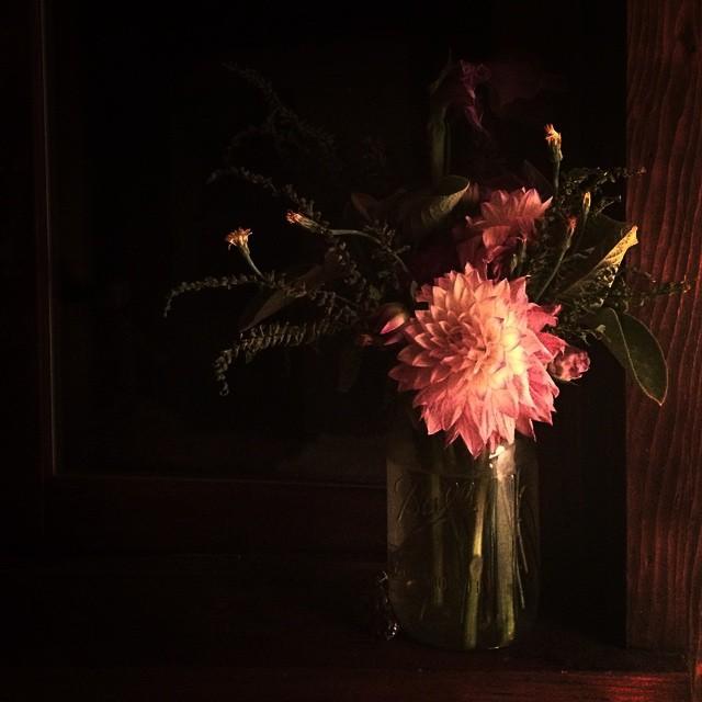 homegrown garden flower arrangement at plum nelli