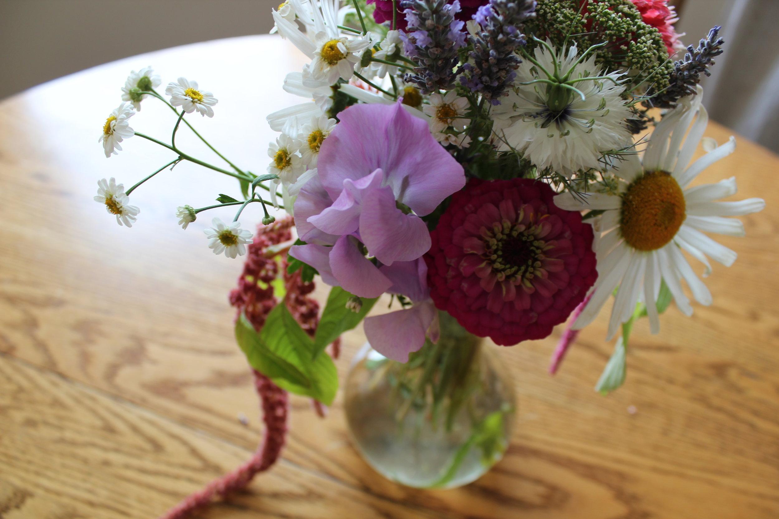 fresh flowers for plum nelli apartment rental.JPG