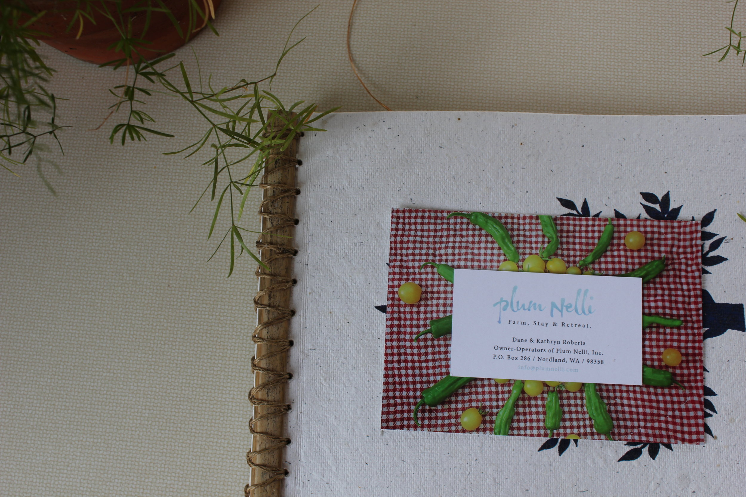 singing frog cabin little guestbook and plant greeting details.JPG
