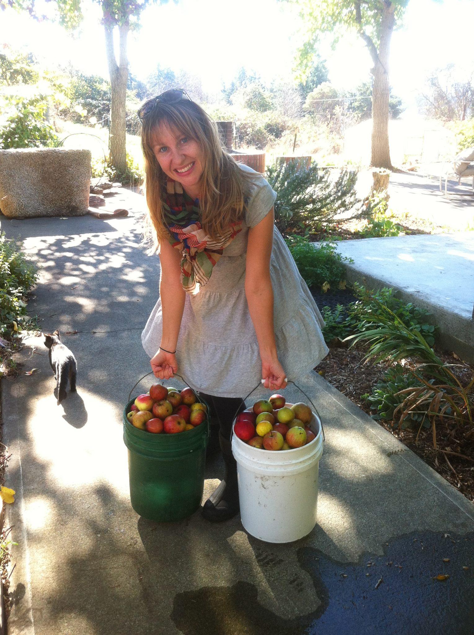 Kathryn Roberts Plum Nelli Farm Apples Washington
