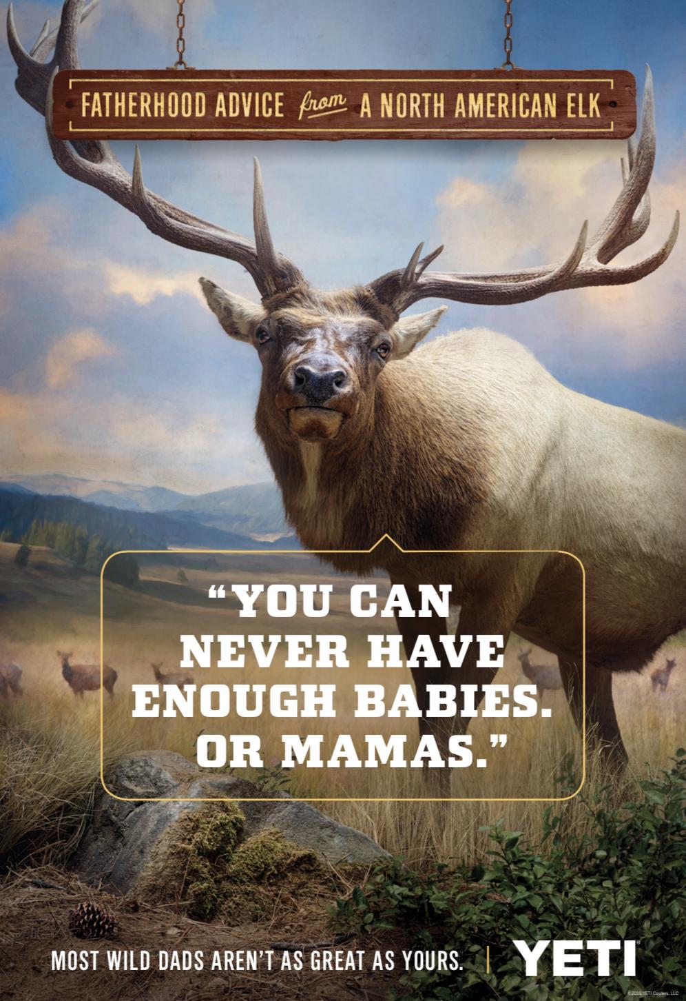 YETI | Elk