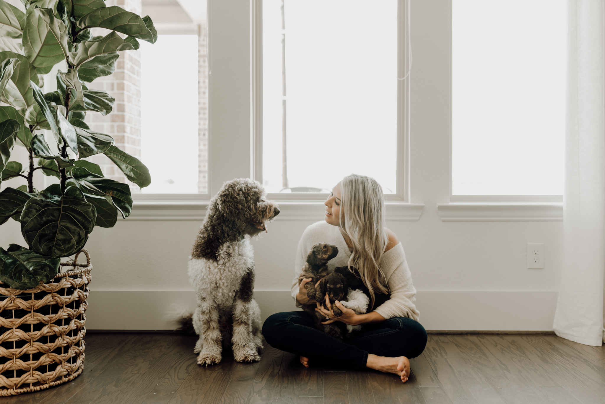 houston-wedding-photographer-in-home-maternity-session-puppies- Houston Wedding Photographer -Kristen Giles Photography-65.jpg