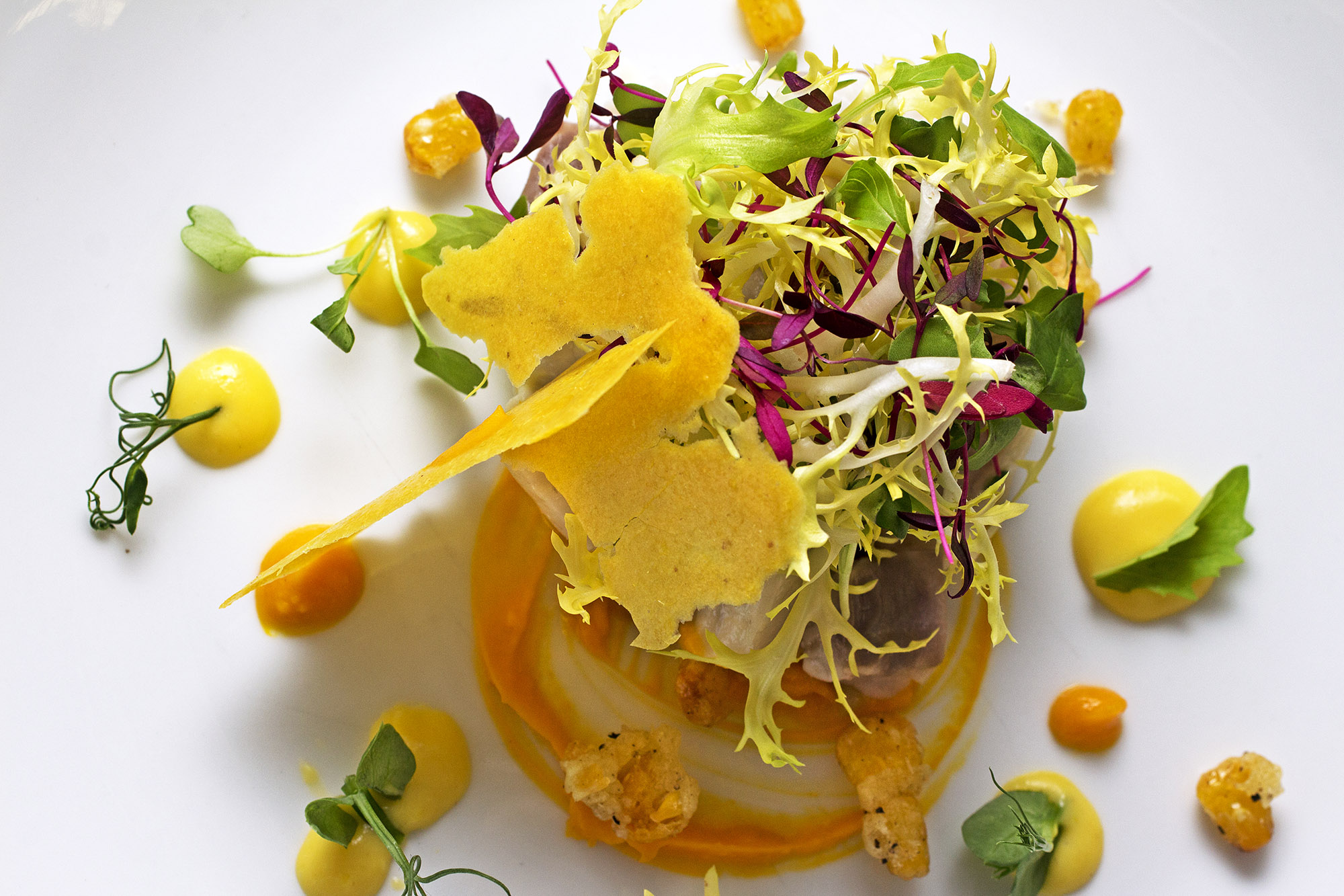 Seabass ceviche with sweet potato purée, Peruvian crispy corn, coriander and a lemon and chive oil.jpg