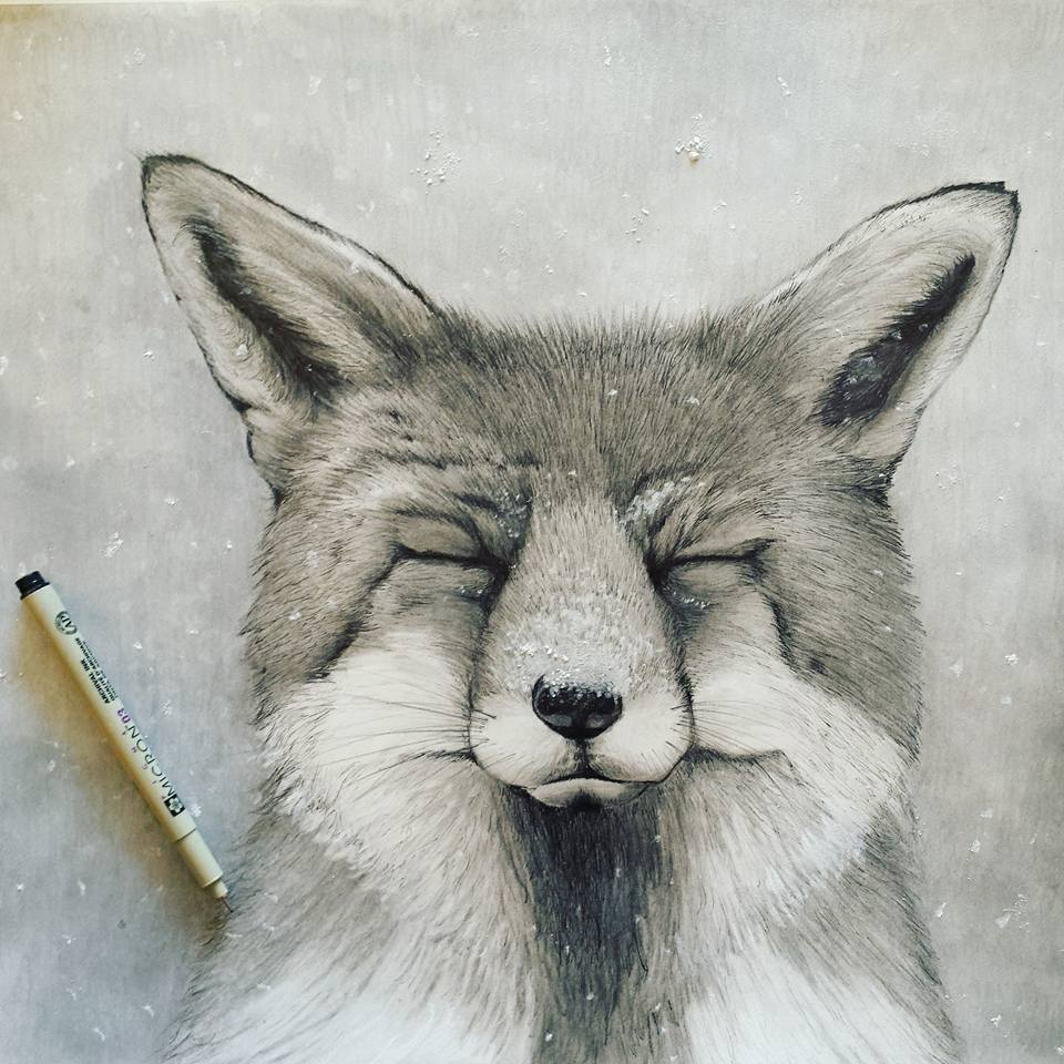 """SOLD    Mr. Fox   14"""" x 17"""" pen and pencil drawing 2016. © Kvanraay Designs 2017.  Not for Sale."""