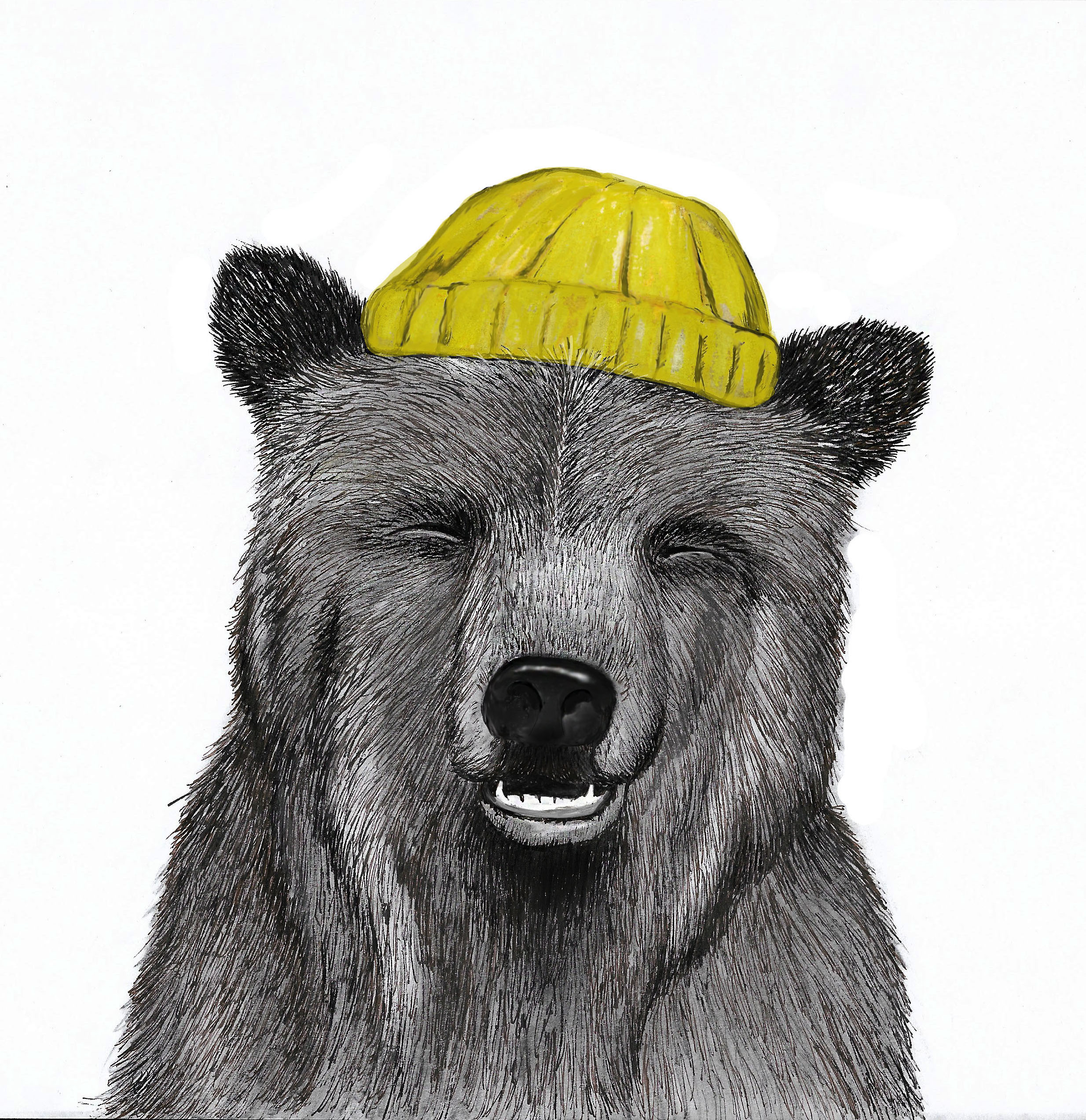 SOLD   Hipster Bear  Pencil drawing 2018. Various sizes © Kvanraay Designs 2018  For Sale. For more information go to   shop.