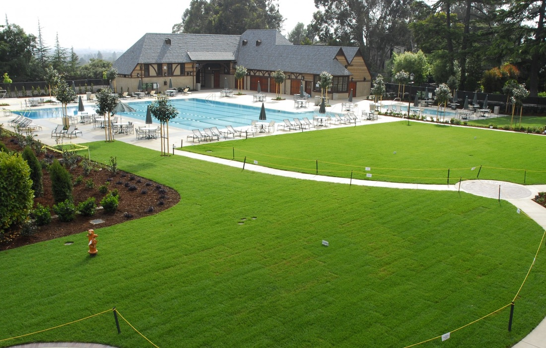 CLAREMONT COUNTRY CLUB, POOL AND POOLHOUSE/MULTI-PURPOSE ROOM