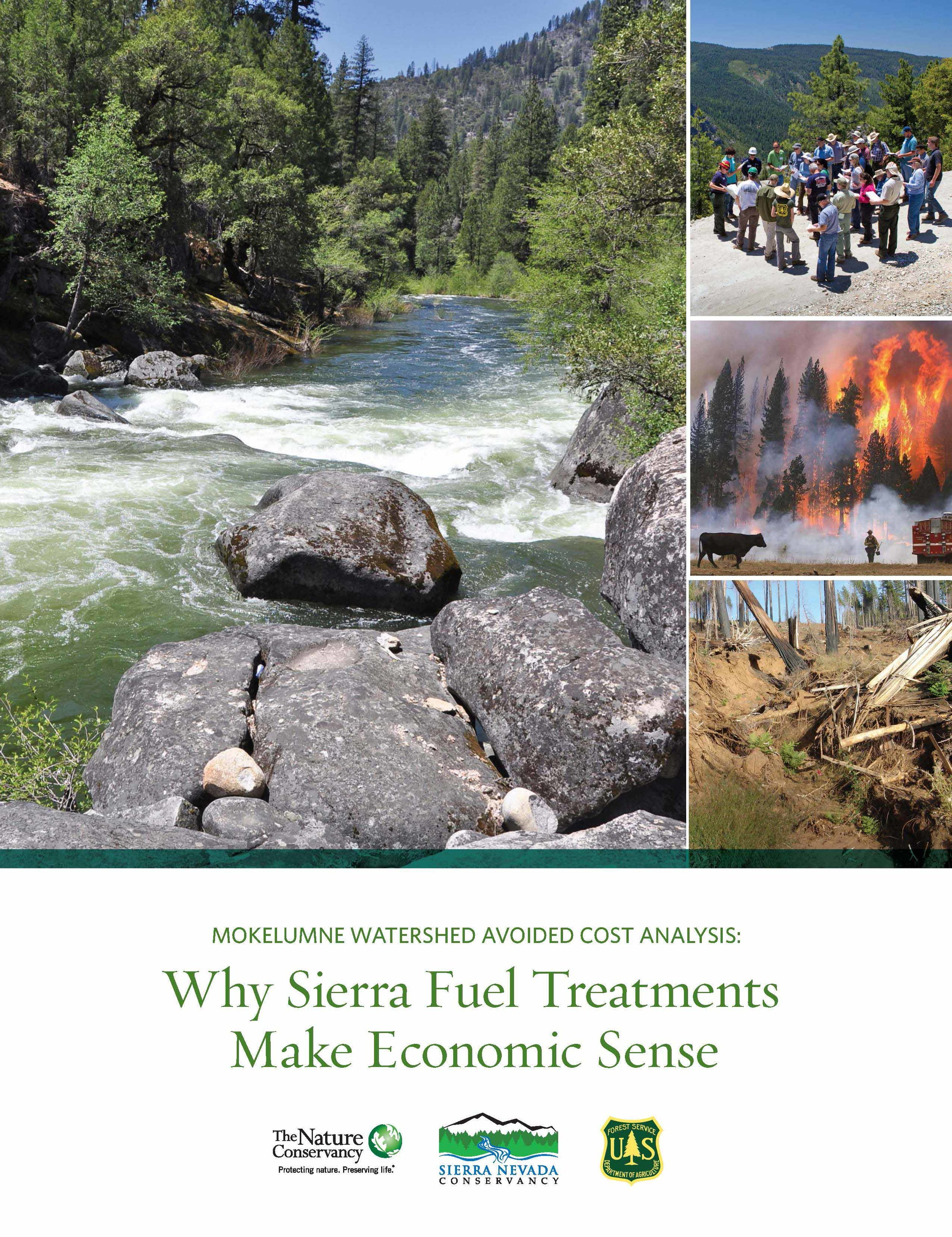 Cover Image–Economic Effects of Wildfire Fuel Treatment.jpg