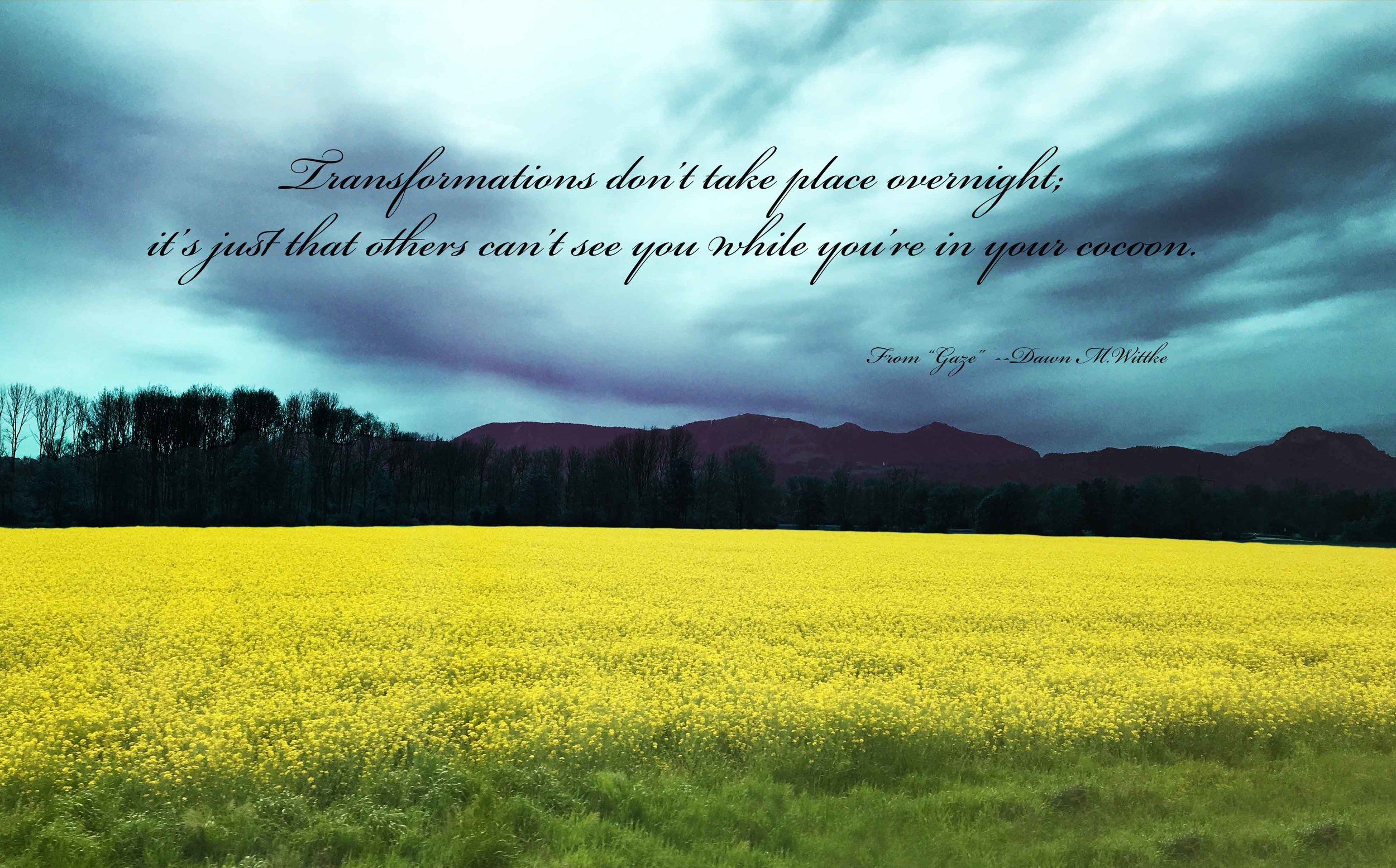 Quote from     Gaze     by    Dawn M. Wittke    Photo taken near Verona Italy. Spring, 2016    .        .