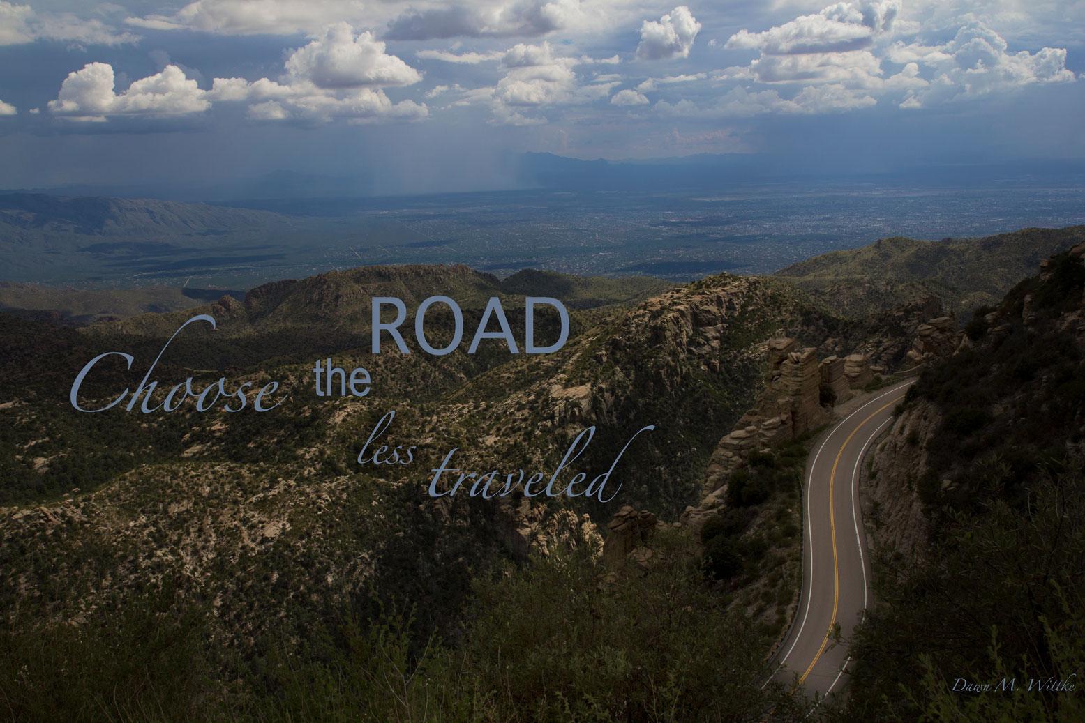 Road Less Traveled    Photo by Dawn M. Wittke    Taken near Mt Lemmon in The Santa Catalina Mountains, Arizona       .      .    .