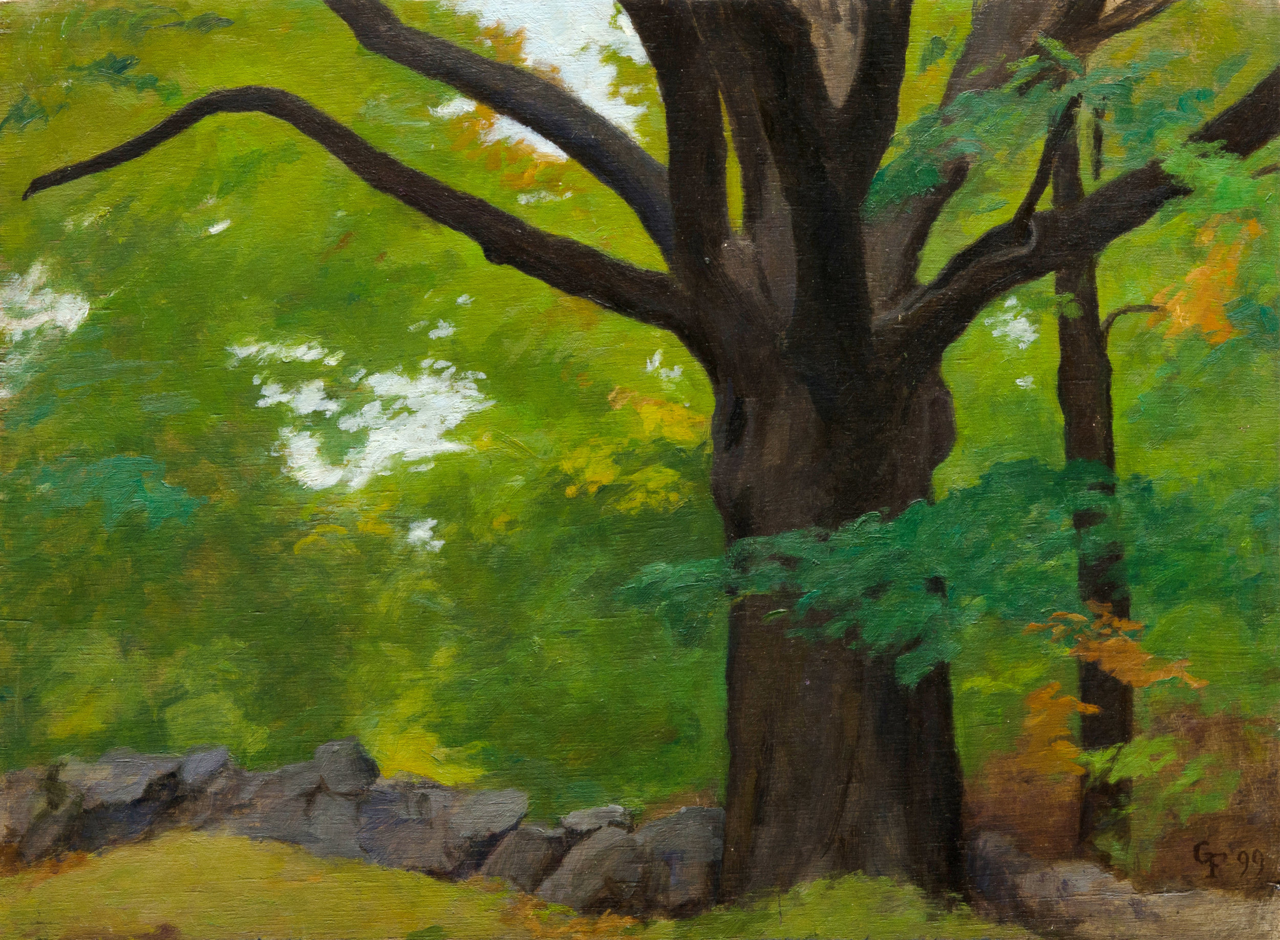 "Oak in Stone Wall, oil on panel, 12"" x 16"""