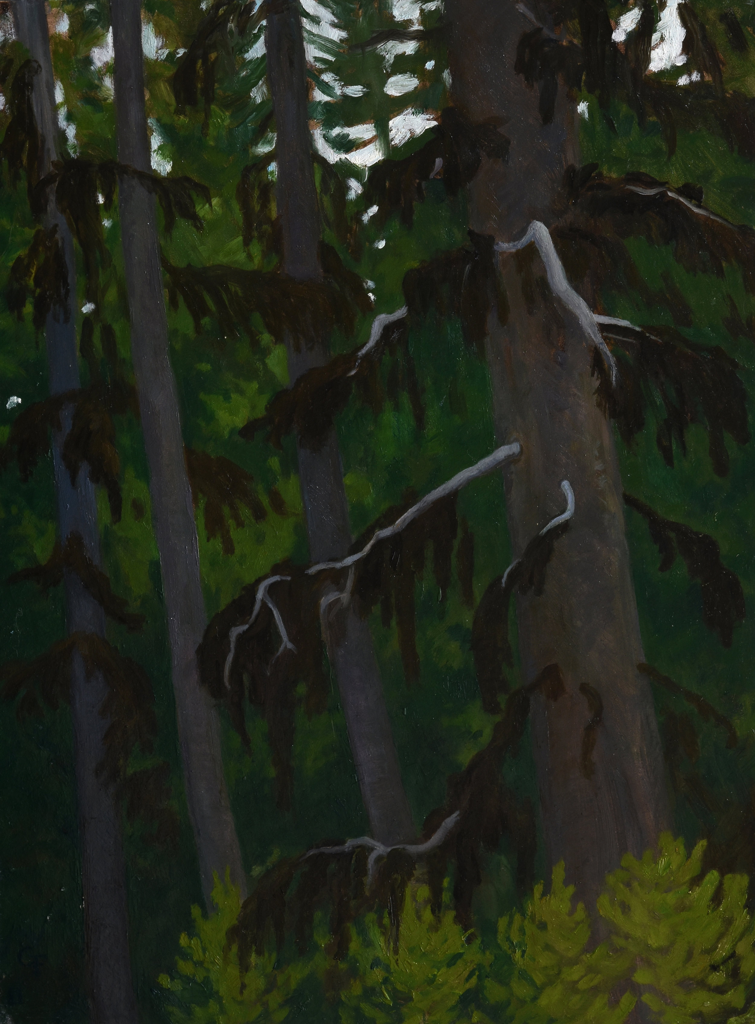 "Bearded Trees, oil on panel, 12"" x 9"""