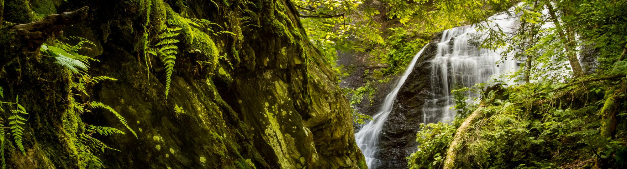 Moss Glenn Falls in the Vermont woods