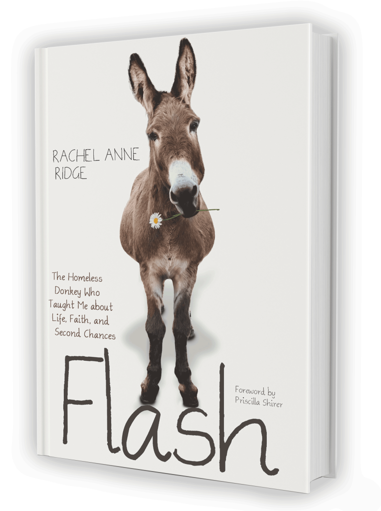 book-cover-flash-white-764x1024.png