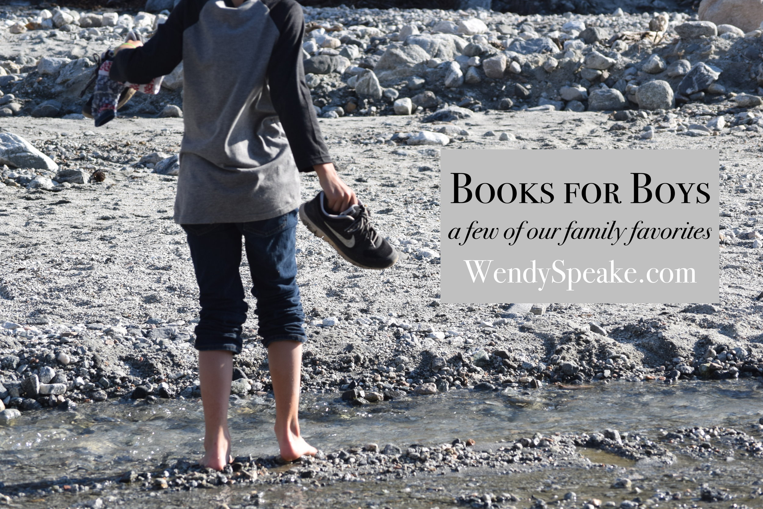 booksforboys-graphic.jpeg