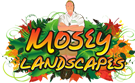 Mosey Landscape