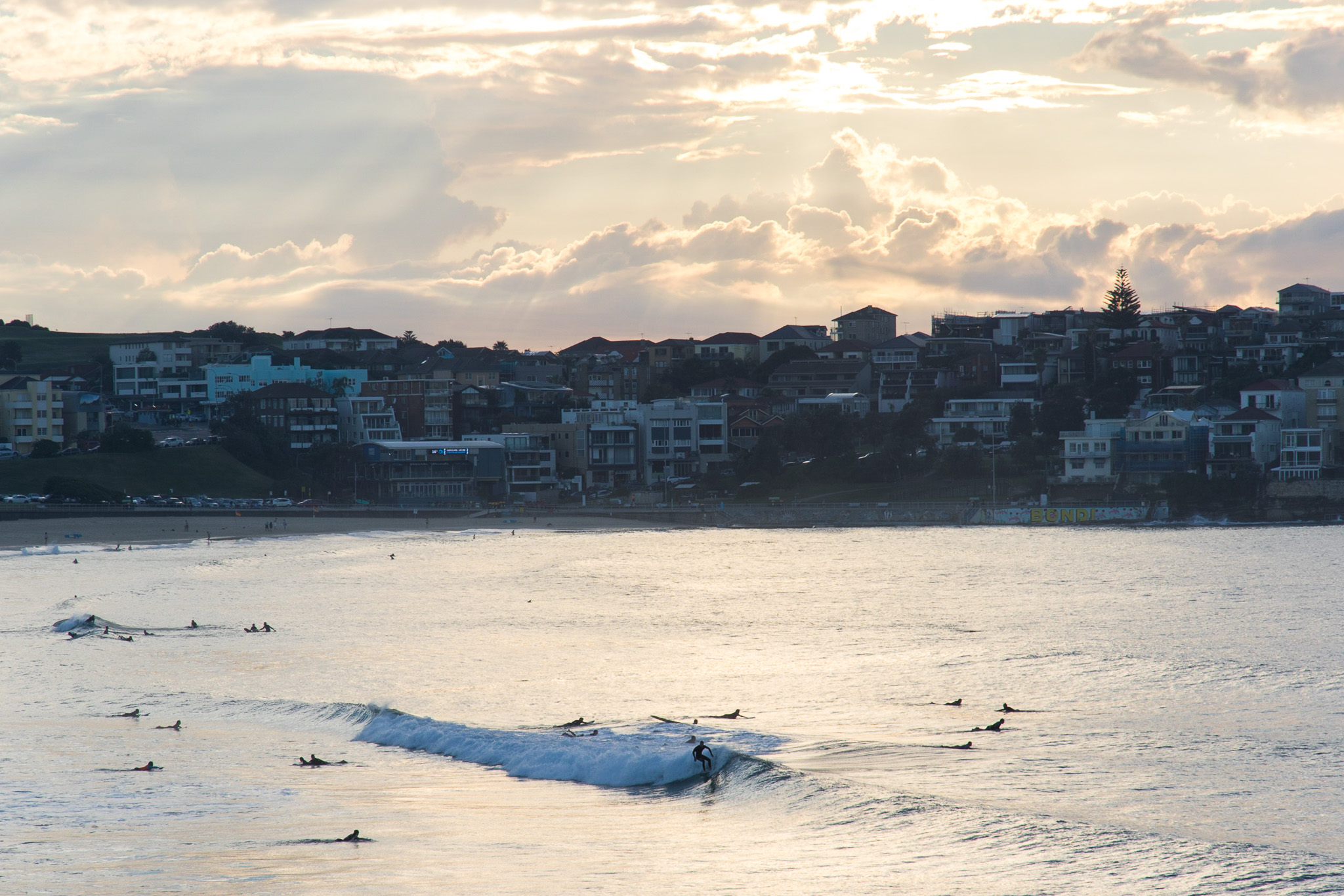 Sunrise surfing at bondi beach in sydney