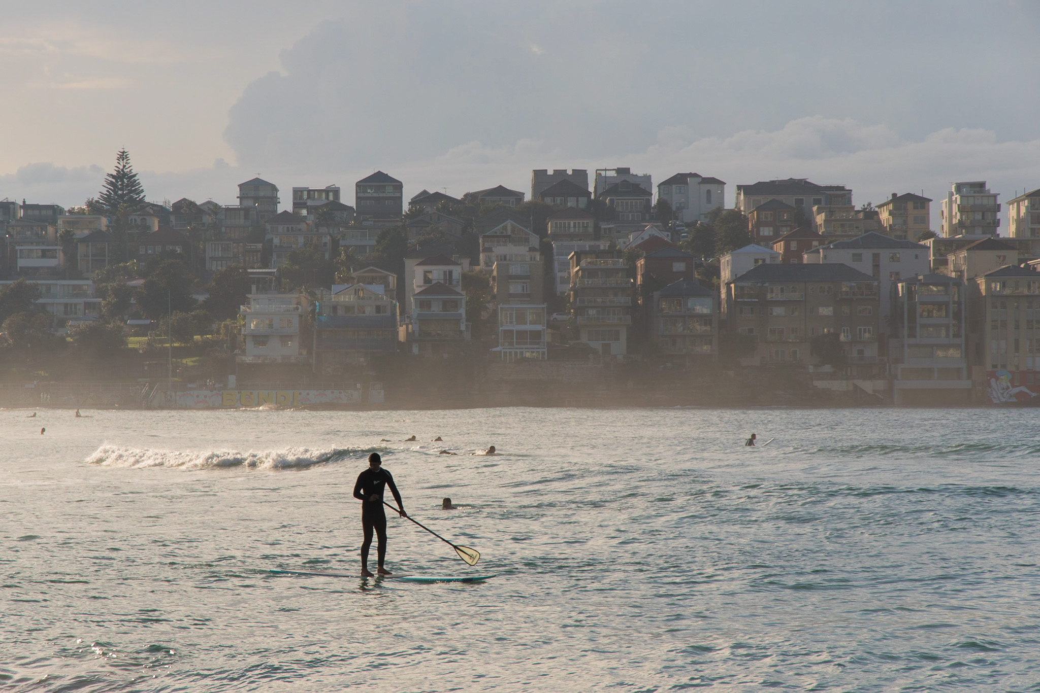 stand up paddle boarding at bondi beach