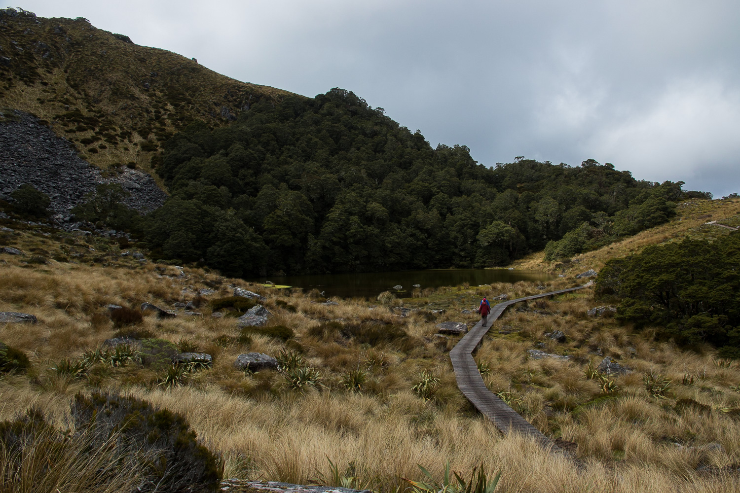 West Coast tramping New Zealand