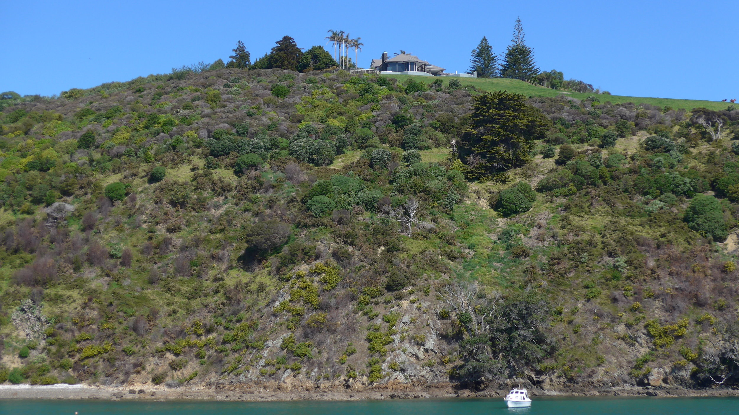 home with an oceanview in auckland