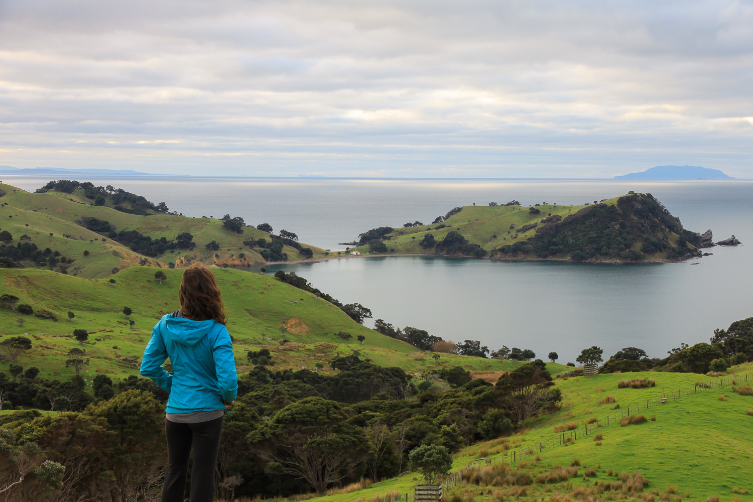 female hiker enjoying the coastal view on waiheke island
