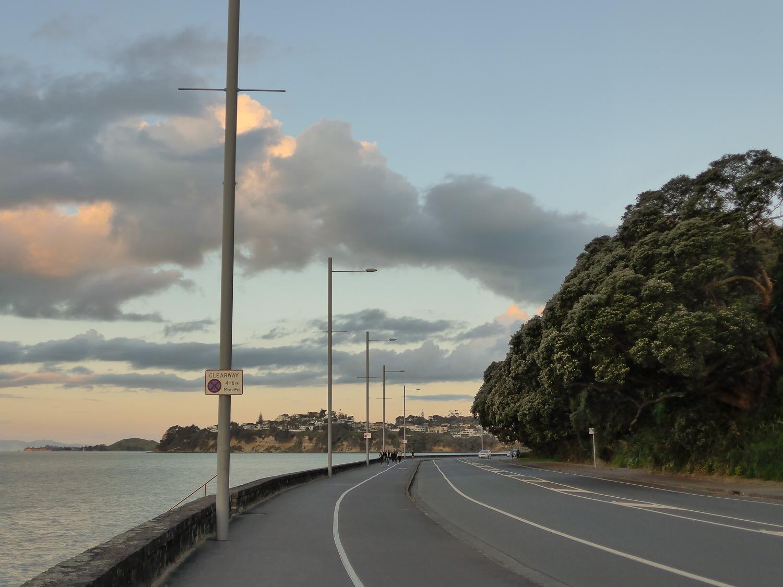 auckland tamaki drive