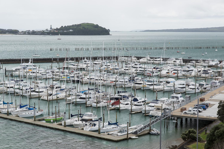 sailboats auckland