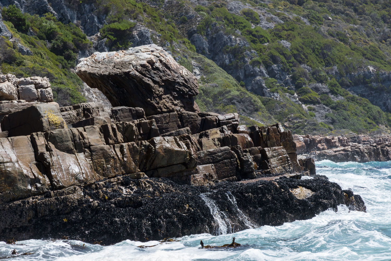 rocky coastline in cape point