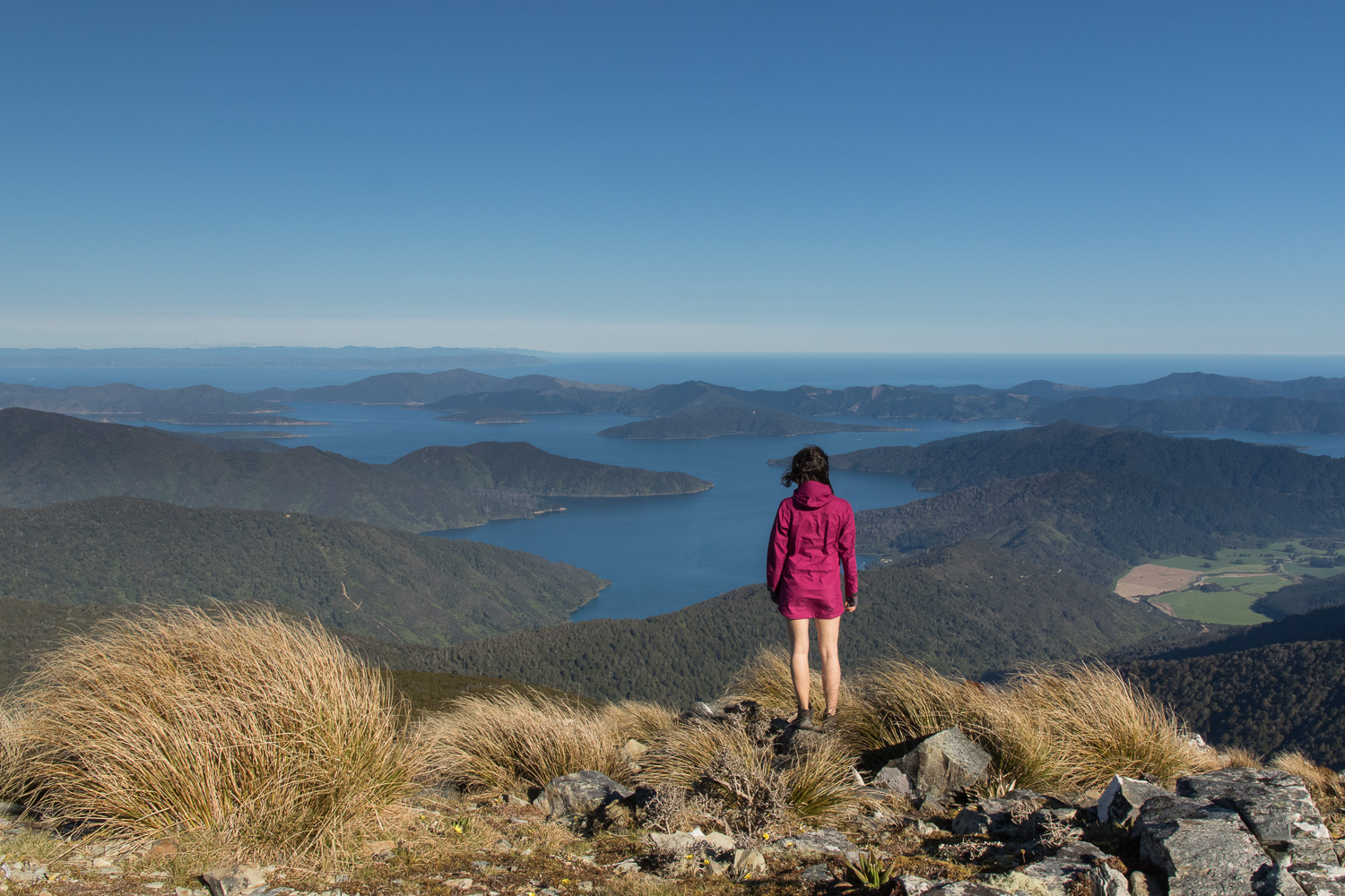 female hiker admiring view of marlborough sounds